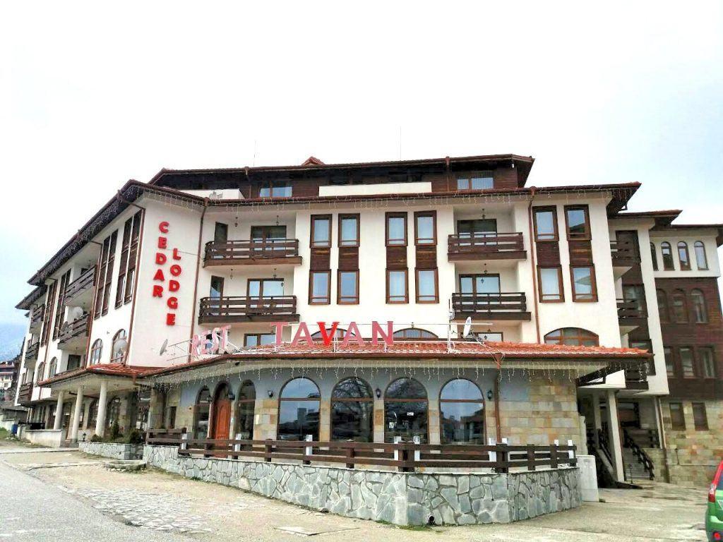Cedar Lodge 4 (1)