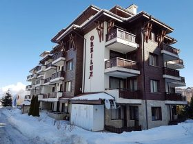 Bansko, Orbilux Furnished one-bedroom apartment